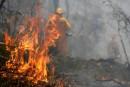 Les incendies en Australie: parmi les plus meurtriers dans le monde