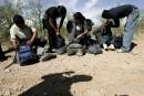 L'immigration illégale en chute libre