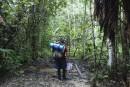 Une nuit dans la forêt amazonienne