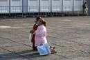 La grippe porcine atteint le Canada: six cas confirmés