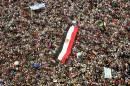 Présidentielle: des milliers d'Égyptiens contre les candidats de l'ex-régime