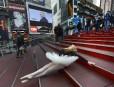 Une touriste déguisée en ballerine sur les marches de Times... | 24 janvier 2013