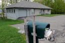 Deux soeurs trouvées mortes: incompréhension à Ste-Famille