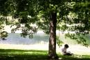 Lecture à l'ombre d'un arbre au Parc Lafontaine.... | 17 juillet 2013