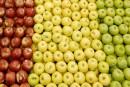 Une pomme par jour contre l'obésité?