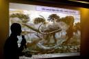 Les restes d'un dinosaure de 100 tonnes découverts