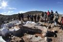 D'autres dinosaures pourraient être découverts en Patagonie