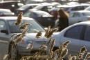 AMT: des centaines de places de stationnement à louer