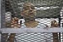 Le journaliste canadien condamné en Égypte ne perdra pas sa citoyenneté
