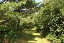 «La forêt de la luxure»au parc du Barrage