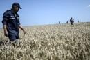 Ukraine: l'armée reprend du terrain près du site du crash