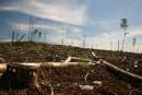 Contamination au mercure: les Autochtones reviennent à la charge en Ontario