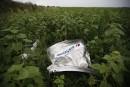 MH17: 65 victimes identifiées, les experts quittent l'Ukraine