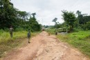 Efforts pour empêcher l'Ebola d'entrer en Côte d'Ivoire