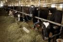 De l'aide bien réelle pour la relève agricole, selon des intervenants