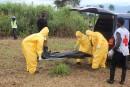 Ebola: des travaux d'experts rendus publics