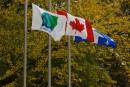 Des drapeaux en berne sur plusieurs édifices