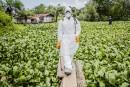 Les nouveaux cas d'Ebola diminuent au Liberia