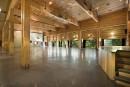 Ingénieurs: du bois aux outils biomédicaux, de nouvelles expertises émergent