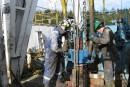 Course au pétrole: Pétrolia et Junex s'activent en Gaspésie