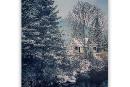 Projet Clic: premières neiges