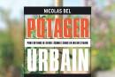 <em>Potager urbain</em>