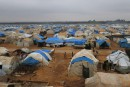 L'exode des Syriens