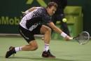 Tomas Berdych et David Ferrer en finale au Qatar