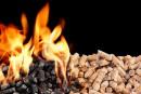 Les granules de bois se font rares