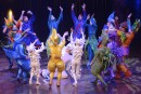 La vente du Cirque du Soleil se dessine