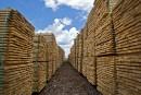 Investir dans le bois et les télécommunications