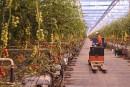 Achat de Savoura par Demers: les emplois seraient conservés à Saint-Étienne