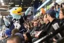 Pas les foules attendues aux matchs Phoenix-Islanders