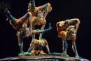 Le Cirque du Soleil vendu àTPG Capital
