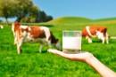 Les producteurs de lait doutent des engagements pris par Ottawa