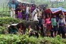 Népal: l'aide commence à atteindre les villages reculés les plus touchés