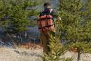 Le risque de feu de forêt est jugé «extrême»