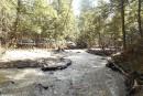 Le ruisseau Dodds sera protégé