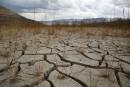 Le monde de la finance s'invite dans les discussions sur le climat