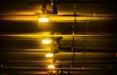 «Les gens ne connaissent pas tous les effets négatifs de l'éclairage artificiel»