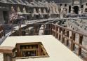 Le monte-charge aux fauves revit au Colisée de Rome