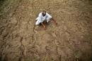 Près de 80% des citoyens «très préoccupés» par le climat, selon l'ONU