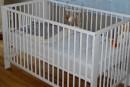 Décès d'un bébé secoué: nouvelle accusation contre le père