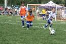 Les terrains de soccer de Magog résistent bien aux précipitations