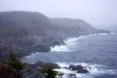 Terre-Neuve: entre falaises et icebergs