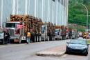 Des entrepreneurs forestiers crient à l'aide