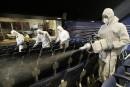 Corée du Sud: un 24e décès dû au coronavirus Mers