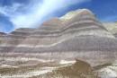 Arizona: la forêt pétrifiée