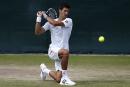 Wimbledon: tous contre Novak Djokovic!