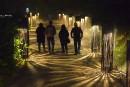 Foresta Lumina: les visiteurs au rendez-vous malgré le mauvais temps